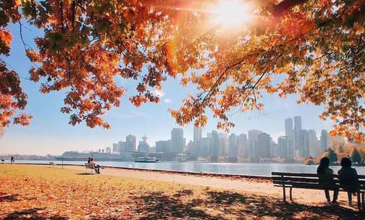 Stanley Park Vancouver in the Autumn | Visiting Vancouver
