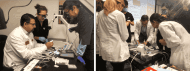 Program Outline | hands-on endo ce training workshops